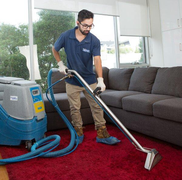 Carpet cleaning technician steam cleaning a red carpet