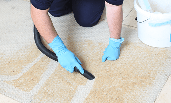 Cleaner vacuuming carpet cleaning powder